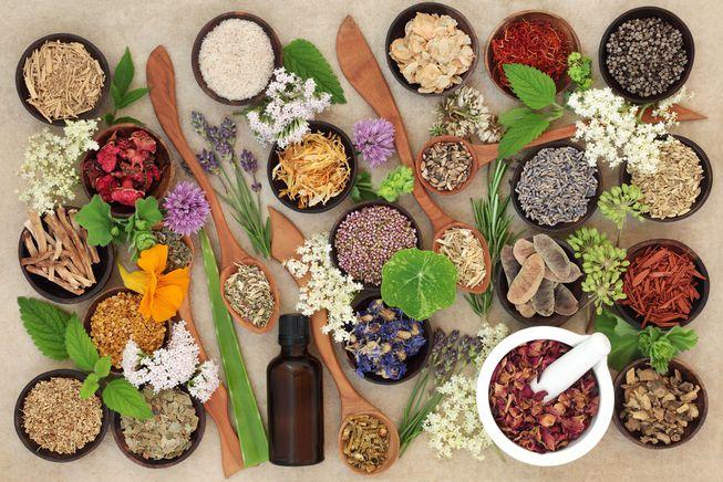 کاشت گیاهان دارویی ، شروعی به قدمت قرن ها